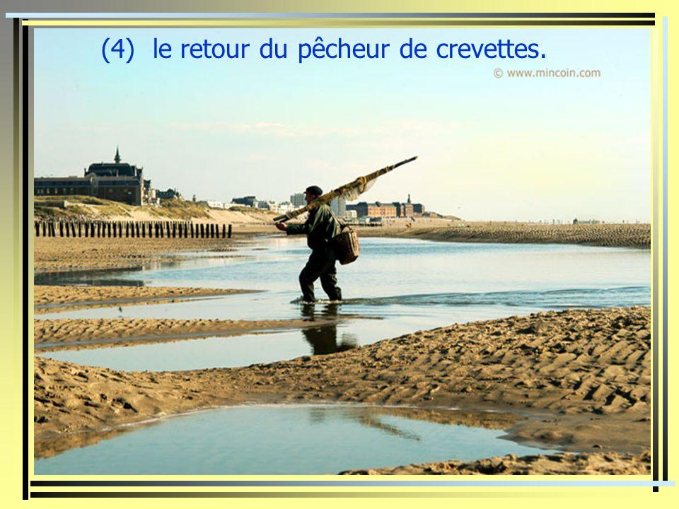 (3) la plage nord