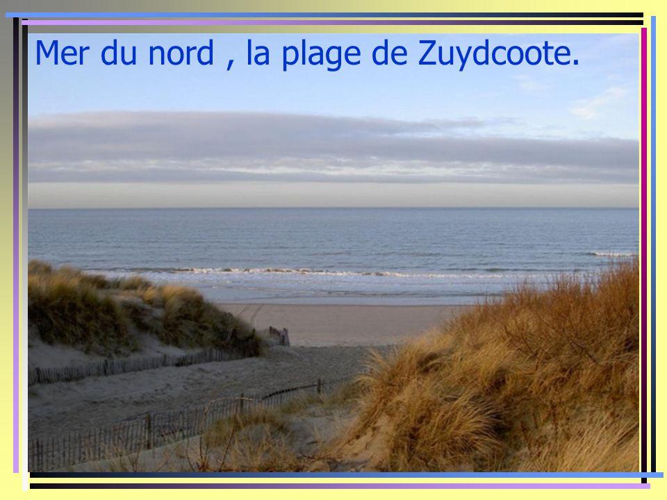 Mer du nord, la plage de Zuydcoote.