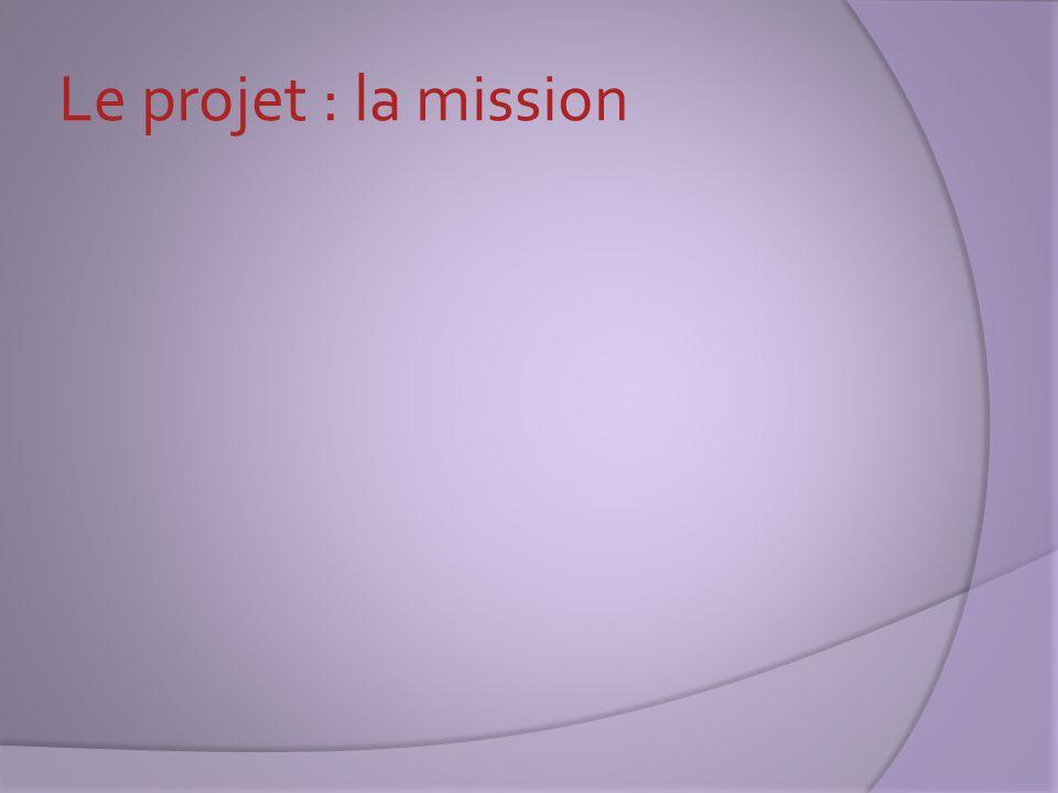 Le projet : les enjeux