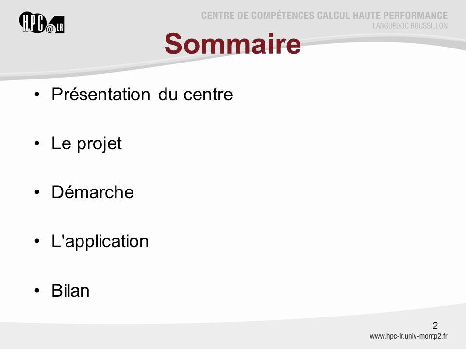 Sommaire Présentation du centre Le projet Démarche L'application Bilan 2