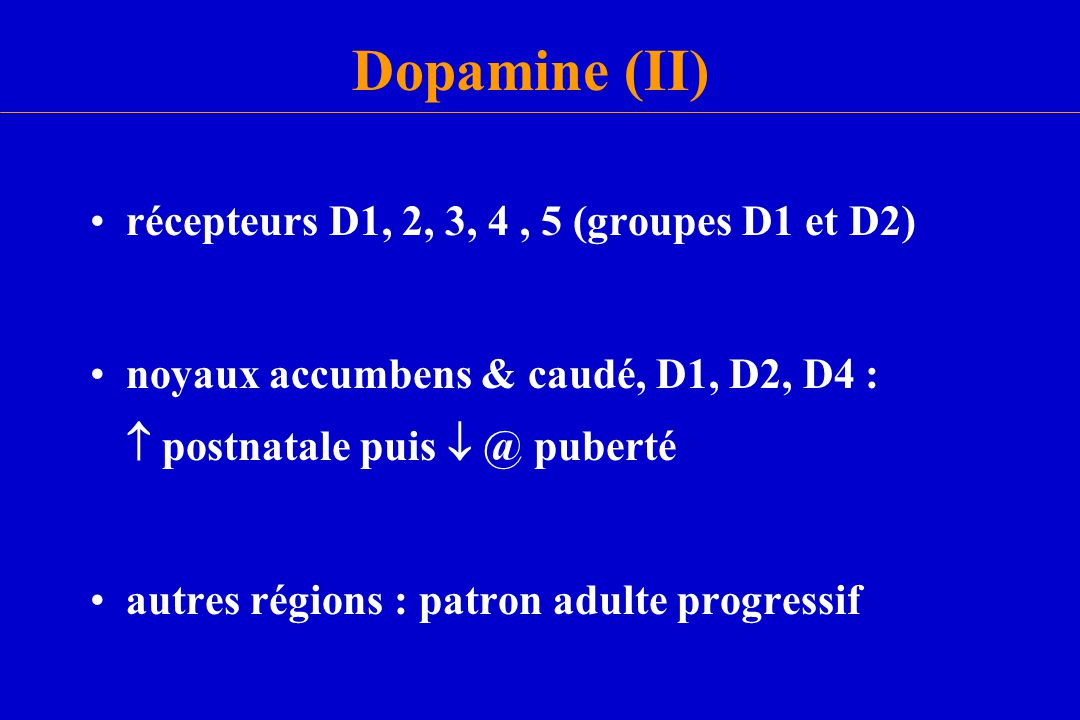 Dopamine (II) récepteurs D1, 2, 3, 4, 5 (groupes D1 et D2) noyaux accumbens & caudé, D1, D2, D4 :  postnatale puis  @ puberté autres régions : patro