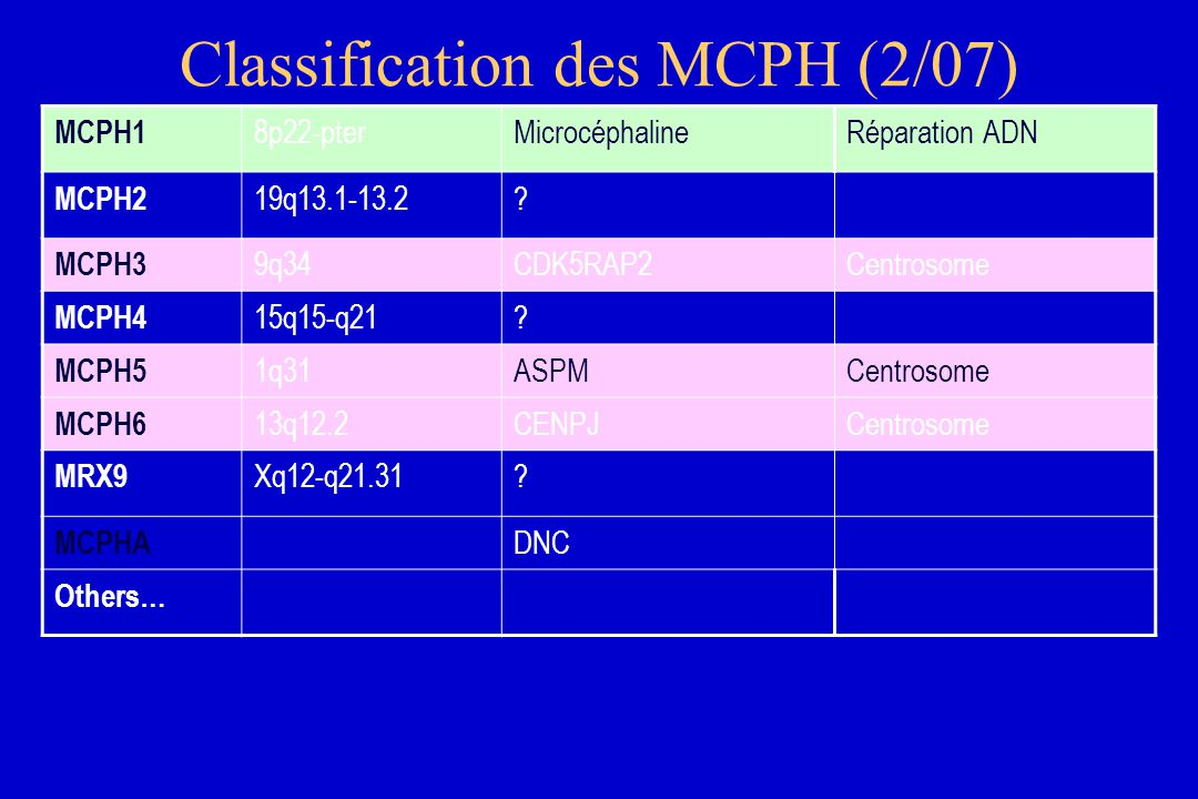 Classification des MCPH (2/07) MCPH1 8p22-pterMicrocéphalineRéparation ADN MCPH2 19q13.1-13.2.