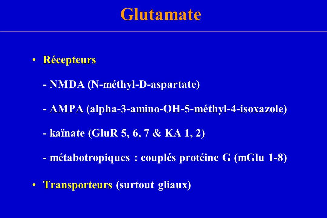 Glutamate Récepteurs - NMDA (N-méthyl-D-aspartate) - AMPA (alpha-3-amino-OH-5-méthyl-4-isoxazole) - kaïnate (GluR 5, 6, 7 & KA 1, 2) - métabotropiques