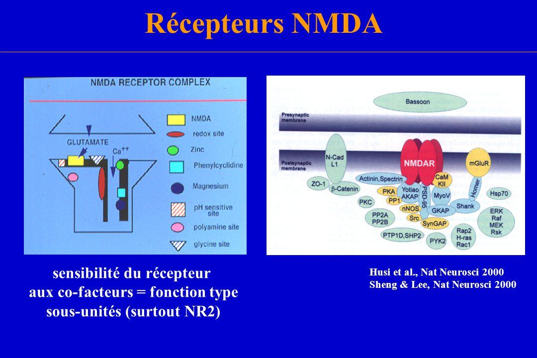 Récepteurs NMDA sensibilité du récepteur aux co-facteurs = fonction type sous-unités (surtout NR2) Husi et al., Nat Neurosci 2000 Sheng & Lee, Nat Neu