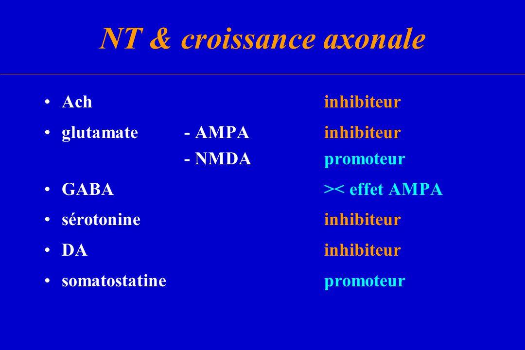 NT & croissance axonale Achinhibiteur glutamate - AMPAinhibiteur - NMDApromoteur GABA>< effet AMPA sérotonineinhibiteur DAinhibiteur somatostatineprom