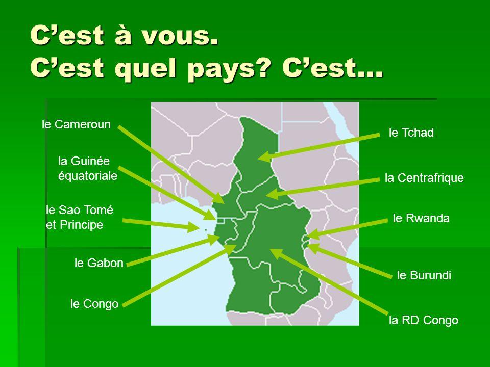 L'Afrique centrale francophone le Cameroun la Guinée équatoriale le Sao Tomé et Principe la Centrafrique le Tchad le Gabon le Congo la RD Congo le Burundi le Rwanda