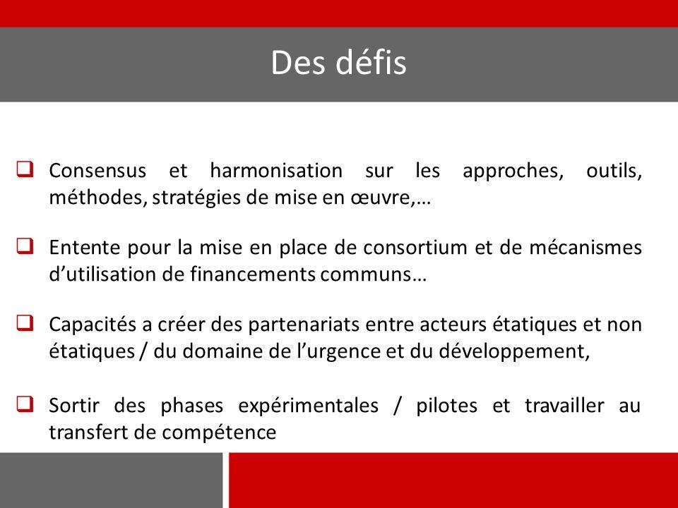 Des défis  Consensus et harmonisation sur les approches, outils, méthodes, stratégies de mise en œuvre,…  Entente pour la mise en place de consortium et de mécanismes d'utilisation de financements communs…  Capacités a créer des partenariats entre acteurs étatiques et non étatiques / du domaine de l'urgence et du développement,  Sortir des phases expérimentales / pilotes et travailler au transfert de compétence
