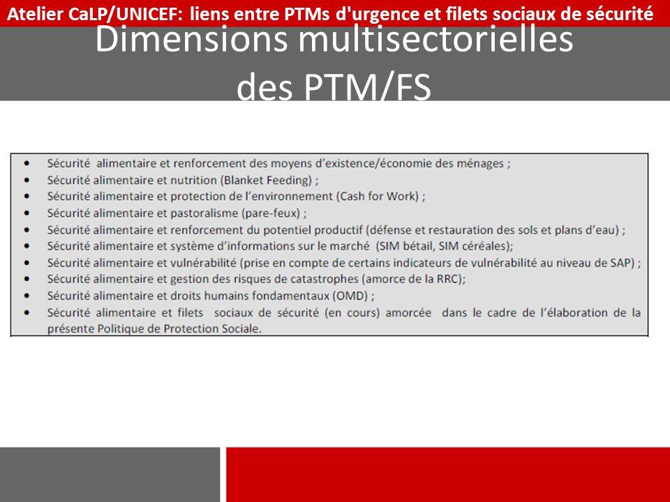 Dimensions multisectorielles des PTM/FS Atelier CaLP/UNICEF: liens entre PTMs d'urgence et filets sociaux de sécurité