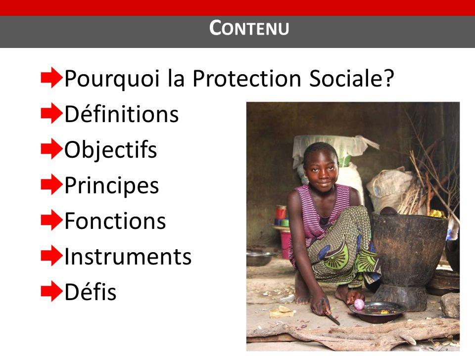 C ONTENU ➨ Pourquoi la Protection Sociale? ➨ Définitions ➨ Objectifs ➨ Principes ➨ Fonctions ➨ Instruments ➨ Défis