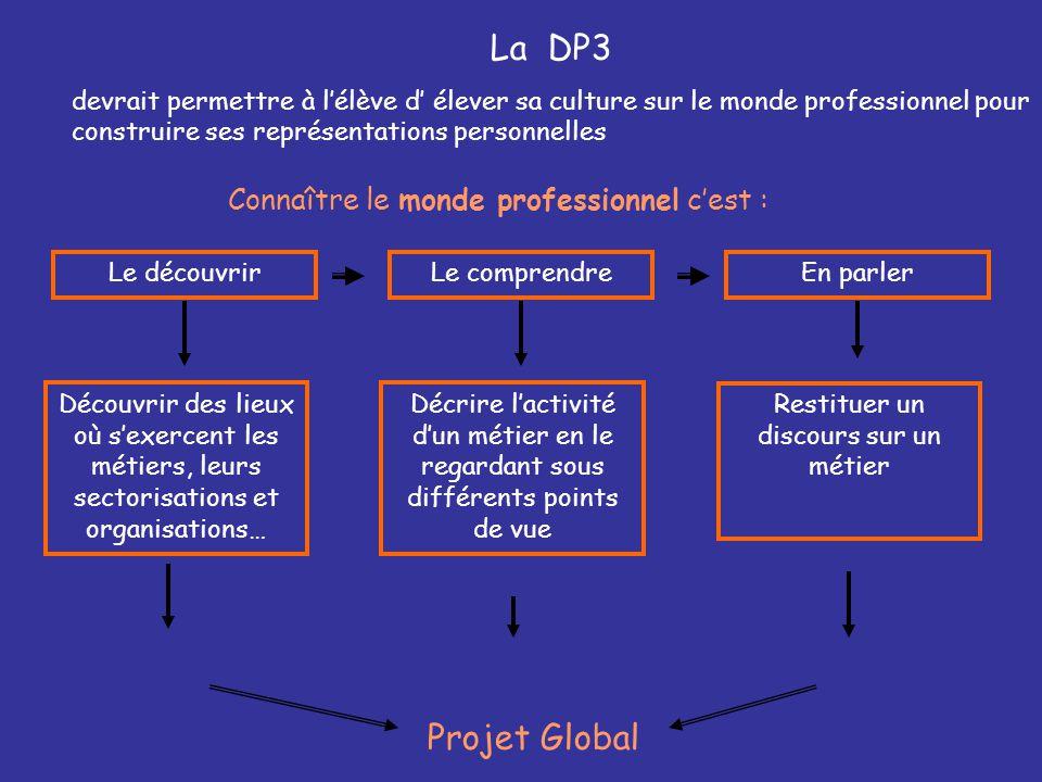 La DP3 devrait permettre à l'élève d' élever sa culture sur le monde professionnel pour construire ses représentations personnelles Connaître le monde