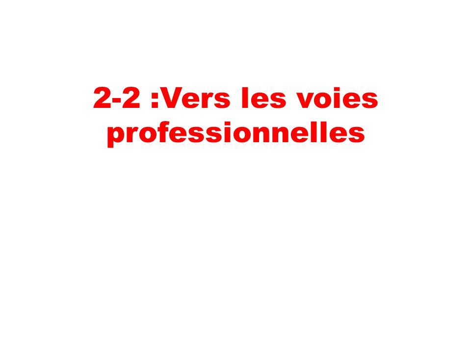 2-2 :Vers les voies professionnelles