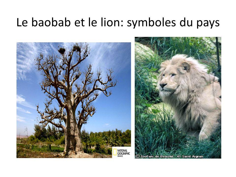 Le baobab et le lion: symboles du pays