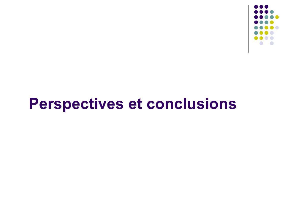 Perspectives et conclusions