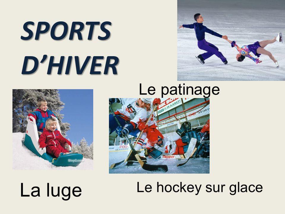 SPORTS D'HIVER La luge Le hockey sur glace Le patinage