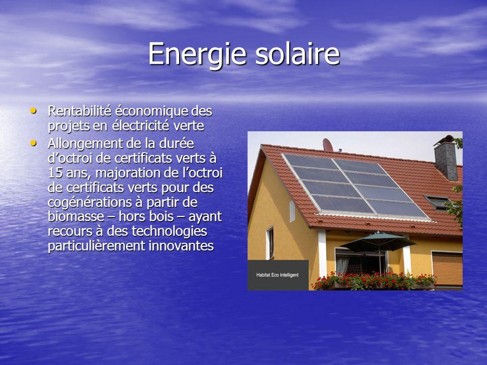 Energie solaire Rentabilité économique des projets en électricité verte Rentabilité économique des projets en électricité verte Allongement de la duré