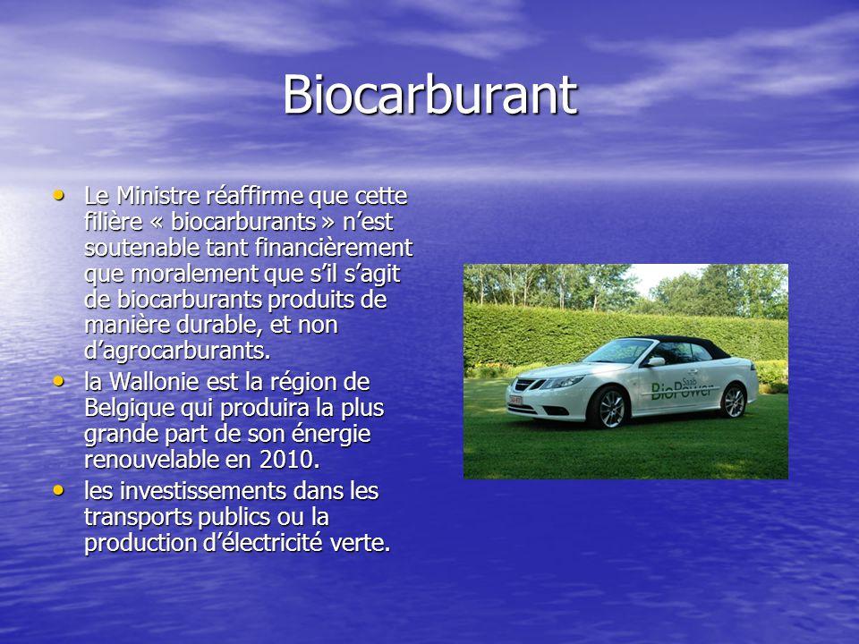 Biocarburant Le Ministre réaffirme que cette filière « biocarburants » n'est soutenable tant financièrement que moralement que s'il s'agit de biocarbu