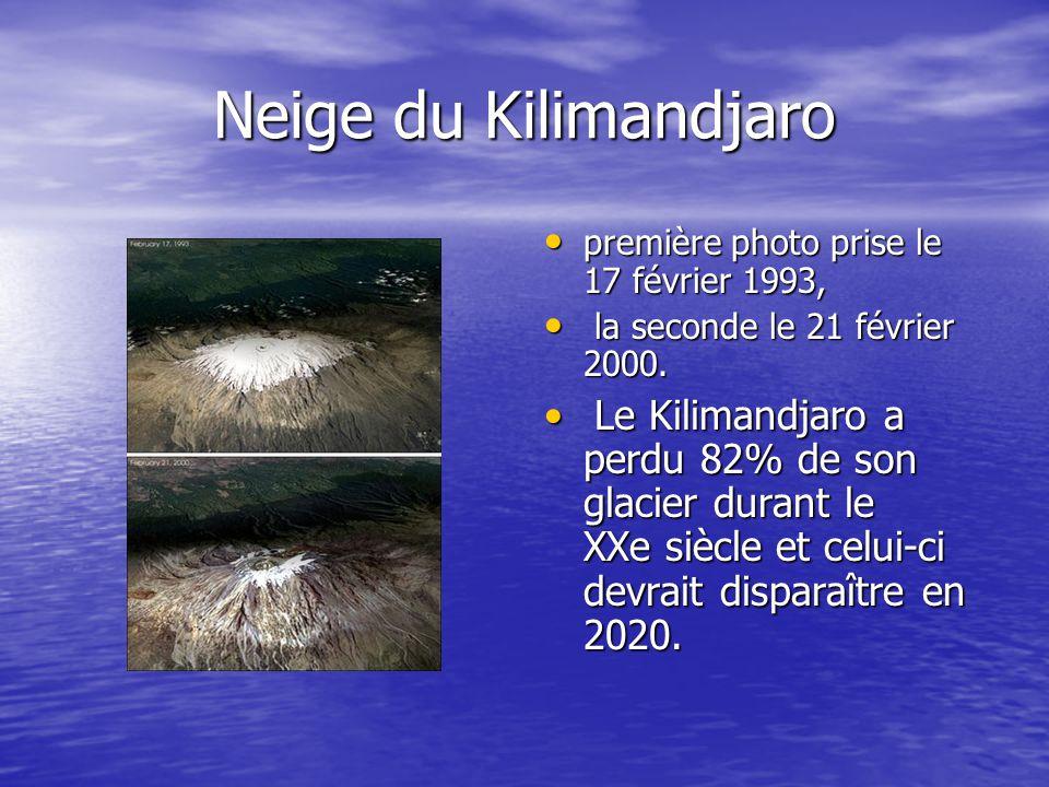 Neige du Kilimandjaro première photo prise le 17 février 1993, première photo prise le 17 février 1993, la seconde le 21 février 2000. la seconde le 2