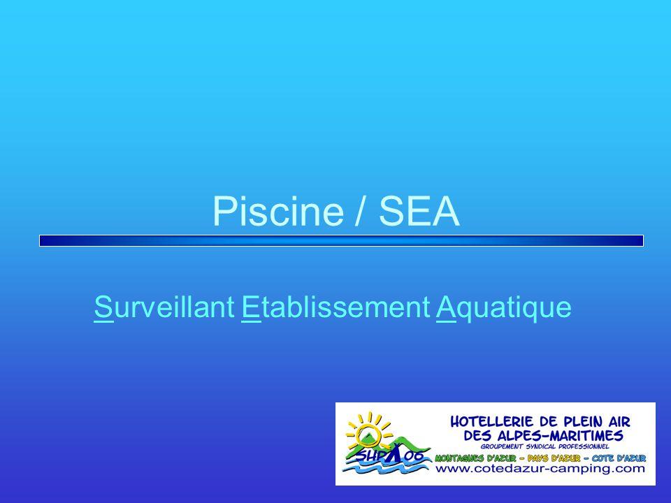 Piscine / SEA Surveillant Etablissement Aquatique