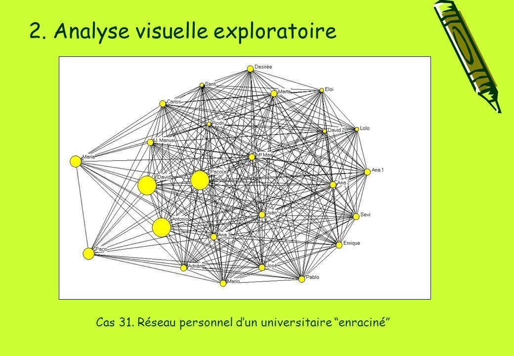 2. Analyse visuelle exploratoire Cas 31. Réseau personnel d'un universitaire enraciné