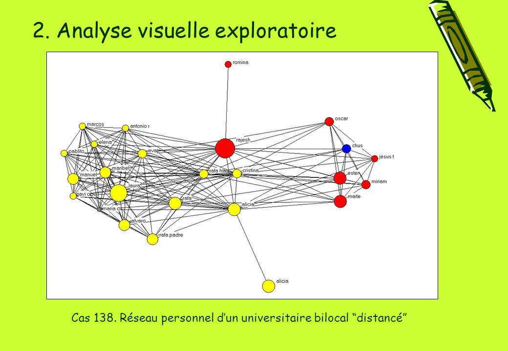 2. Analyse visuelle exploratoire Cas 138. Réseau personnel d'un universitaire bilocal distancé