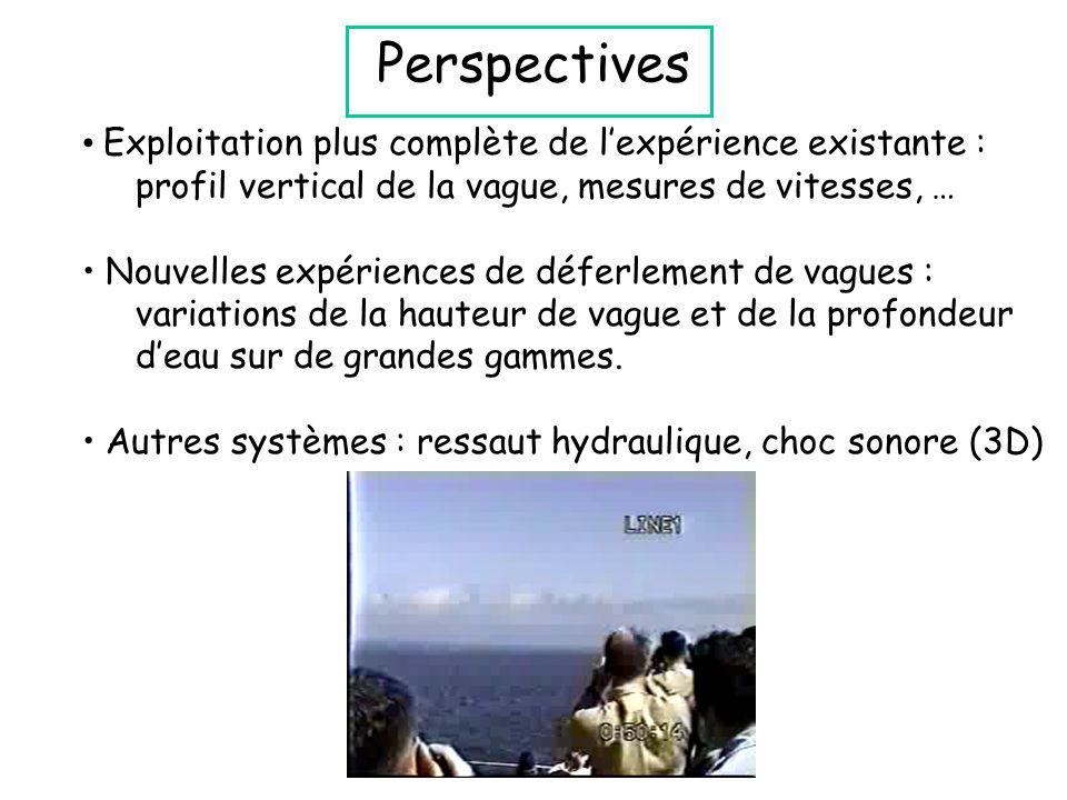 Perspectives Exploitation plus complète de l'expérience existante : profil vertical de la vague, mesures de vitesses, … Nouvelles expériences de déferlement de vagues : variations de la hauteur de vague et de la profondeur d'eau sur de grandes gammes.