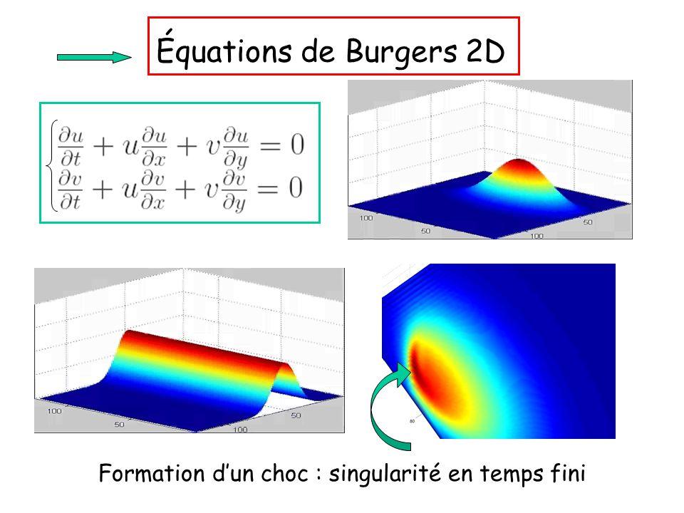 Équations de Burgers 2D Formation d'un choc : singularité en temps fini
