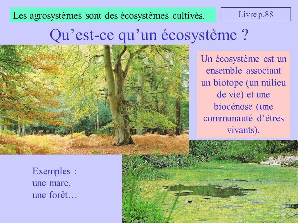 Les agrosystèmes sont des écosystèmes cultivés. Qu'est-ce qu'un écosystème ? Livre p.88 Exemples : une mare, une forêt… Un écosystème est un ensemble