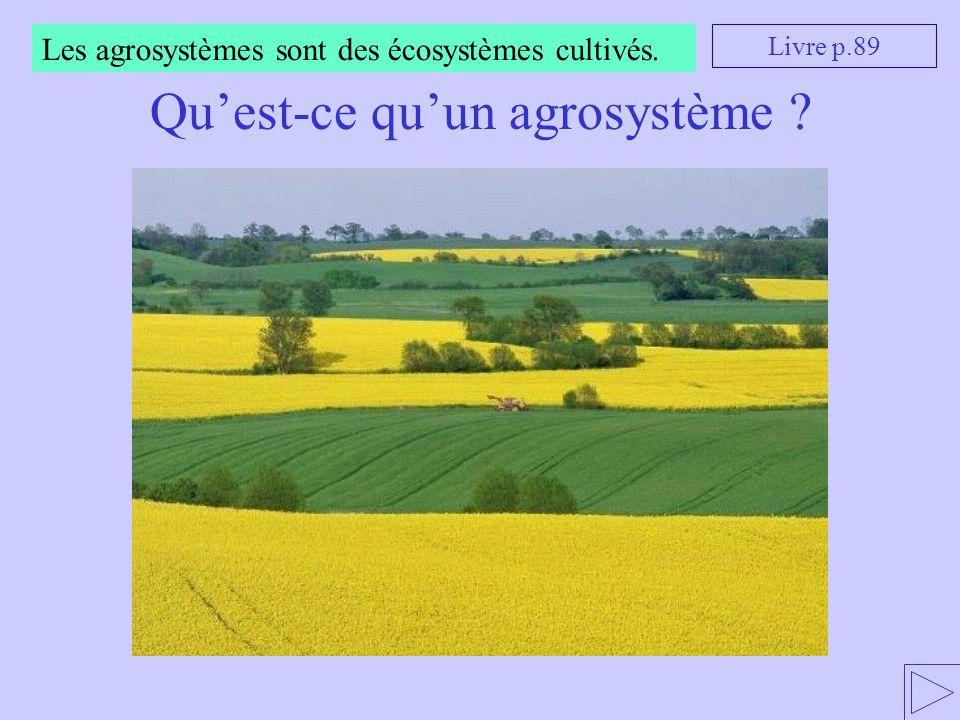 Un agrosystème suppose bien sûr un biotope (un milieu de vie) et une biocénose (une communauté d'êtres vivants).