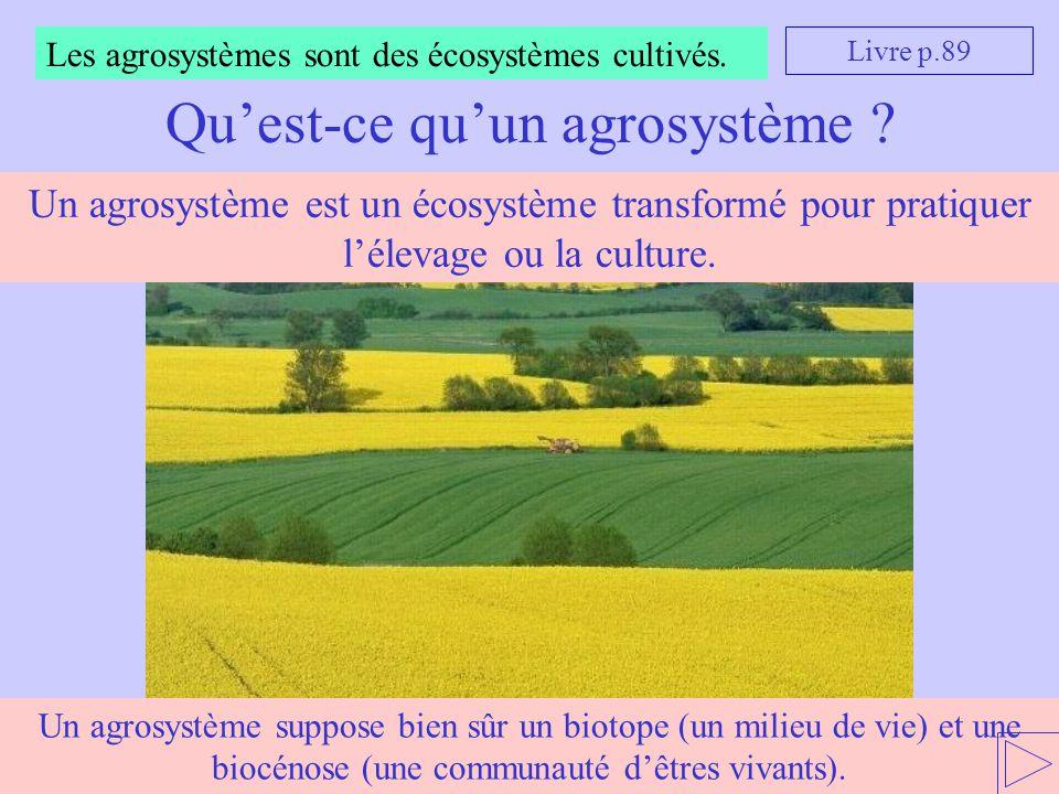 Un agrosystème suppose bien sûr un biotope (un milieu de vie) et une biocénose (une communauté d'êtres vivants). Les agrosystèmes sont des écosystèmes
