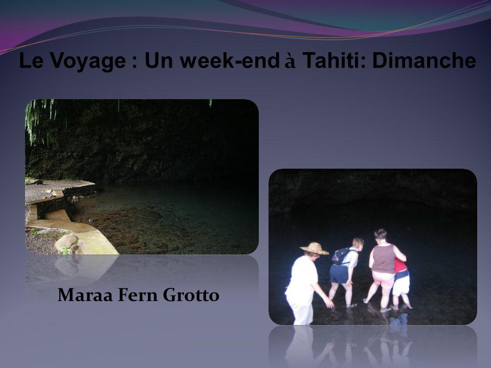 Maraa Fern Grotto
