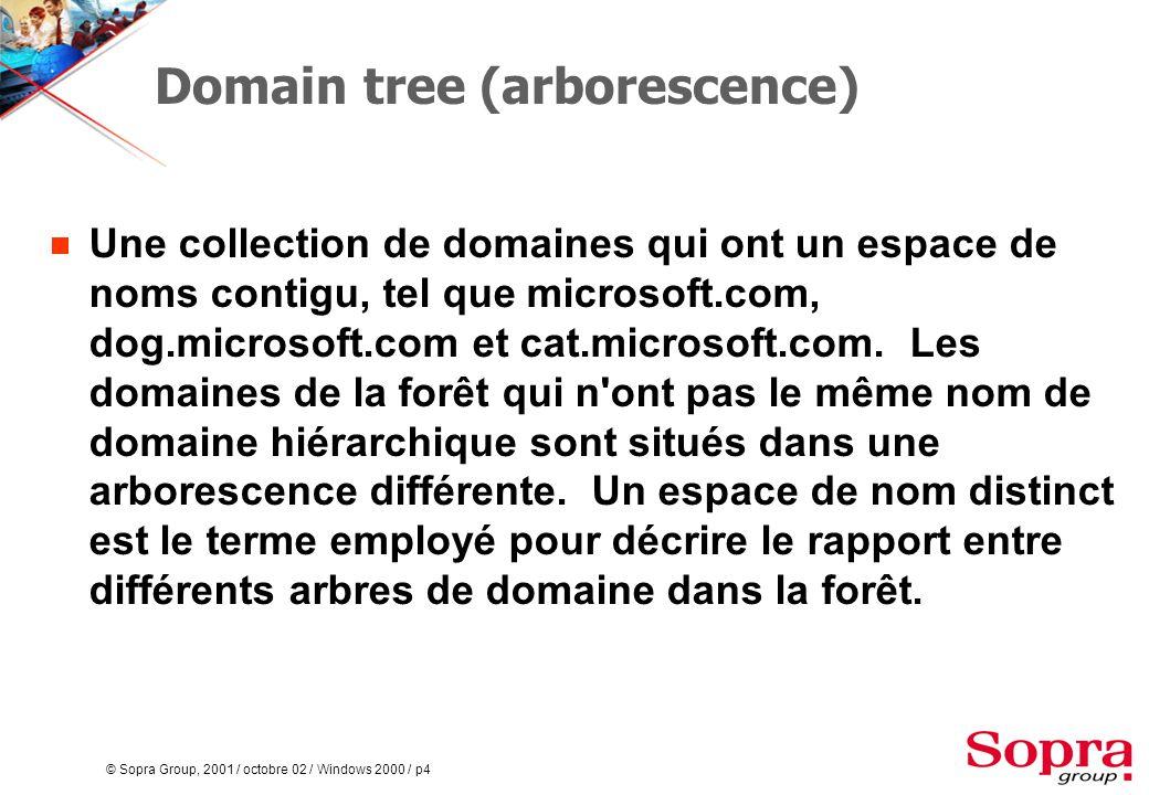 © Sopra Group, 2001 / octobre 02 / Windows 2000 / p5 Forest (forêt)  Une collection de domaines et d arbres de domaine.