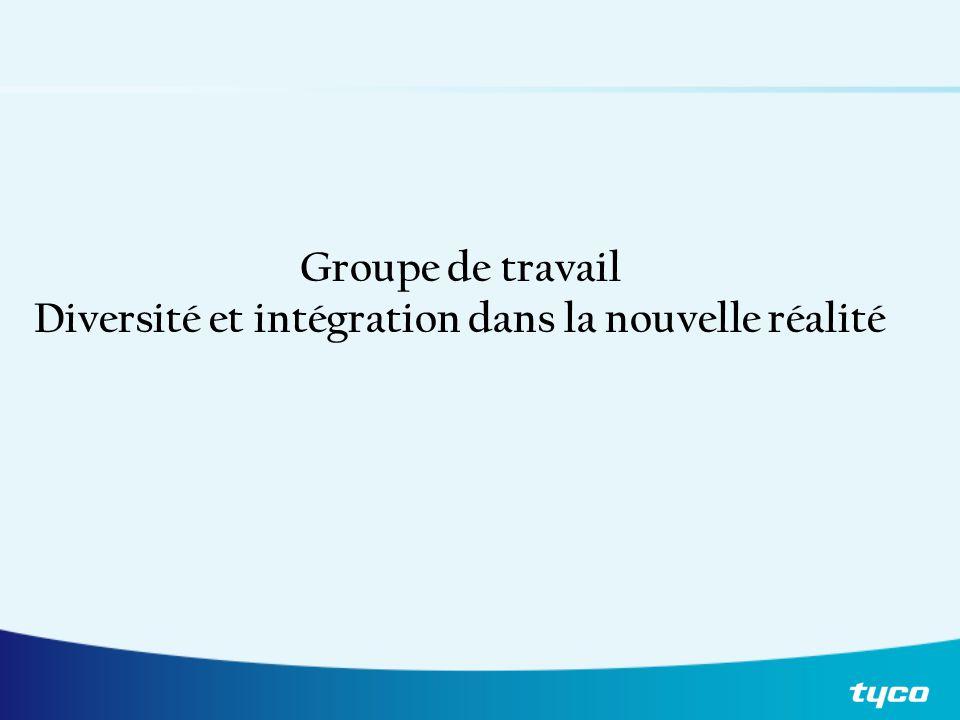 Groupe de travail Diversité et intégration dans la nouvelle réalité