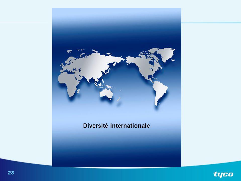 28 Diversité internationale