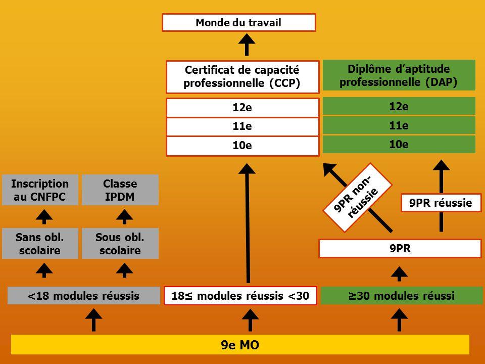 9e MO Monde du travail 12e 11e 10e Certificat de capacité professionnelle (CCP) <18 modules réussis 18≤ modules réussis <30 ≥30 modules réussi 9PR 9PR réussie 9PR non- réussie 12e 11e 10e Diplôme d'aptitude professionnelle (DAP) Sans obl.