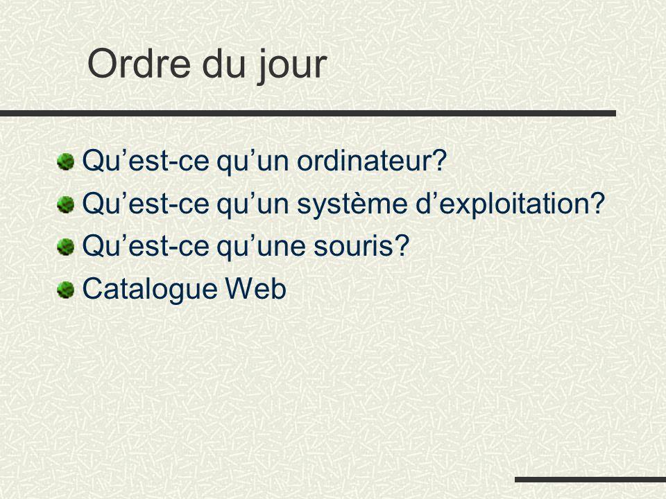 Ordre du jour Qu'est-ce qu'un ordinateur? Qu'est-ce qu'un système d'exploitation? Qu'est-ce qu'une souris? Catalogue Web