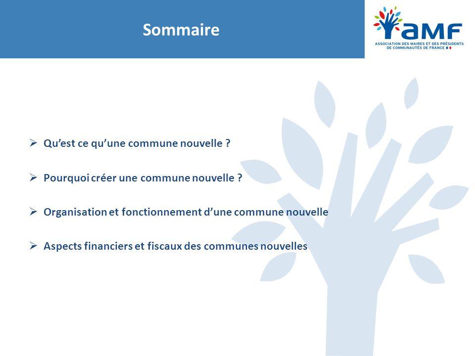 Sommaire  Qu'est ce qu'une commune nouvelle ?  Pourquoi créer une commune nouvelle ?  Organisation et fonctionnement d'une commune nouvelle  Aspec