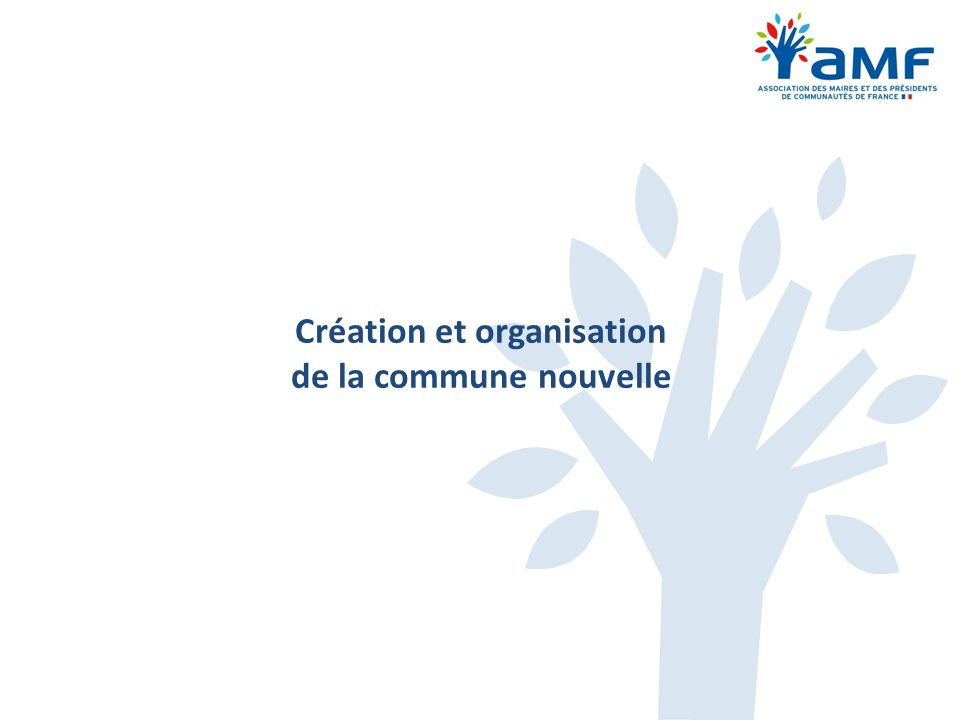 Création et organisation de la commune nouvelle
