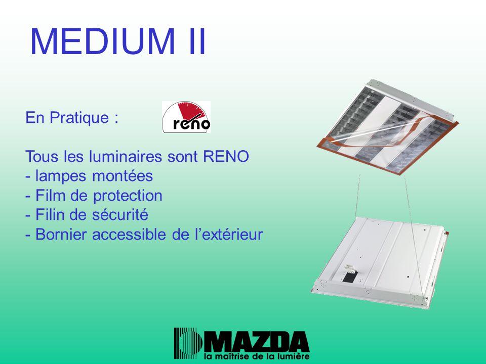 En Pratique : Tous les luminaires sont RENO - lampes montées - Film de protection - Filin de sécurité - Bornier accessible de l'extérieur MEDIUM II