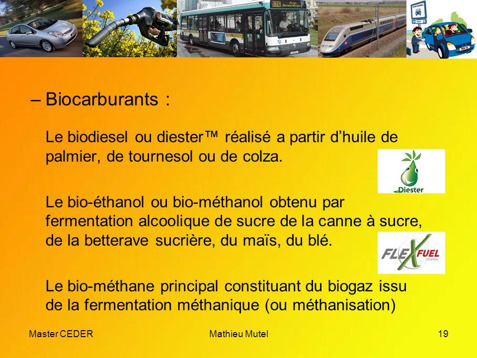 Master CEDERMathieu Mutel19 –Biocarburants : Le biodiesel ou diester™ réalisé a partir d'huile de palmier, de tournesol ou de colza.