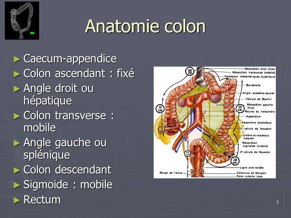 7 Anatomie colon ► Caecum-appendice ► Colon ascendant : fixé ► Angle droit ou hépatique ► Colon transverse : mobile ► Angle gauche ou splénique ► Colo
