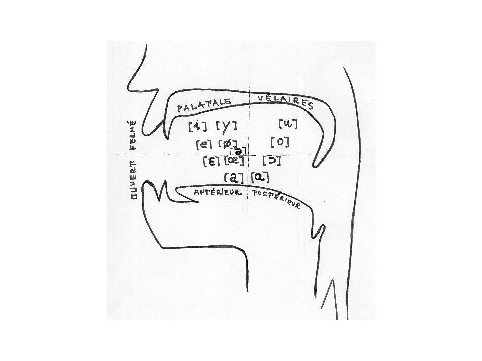 Bibliographie ouvrage de pédagogie : « Apprendre à parler avec des comptines » Marie Goetz-Georges RETZ « Jeux de rythmes et de langage de la maternelle au lycée » Yak Rivais RETZ « Comment la parole vient aux enfants » Bénédicte de Boysson-Bardies éditions Odile Jacob
