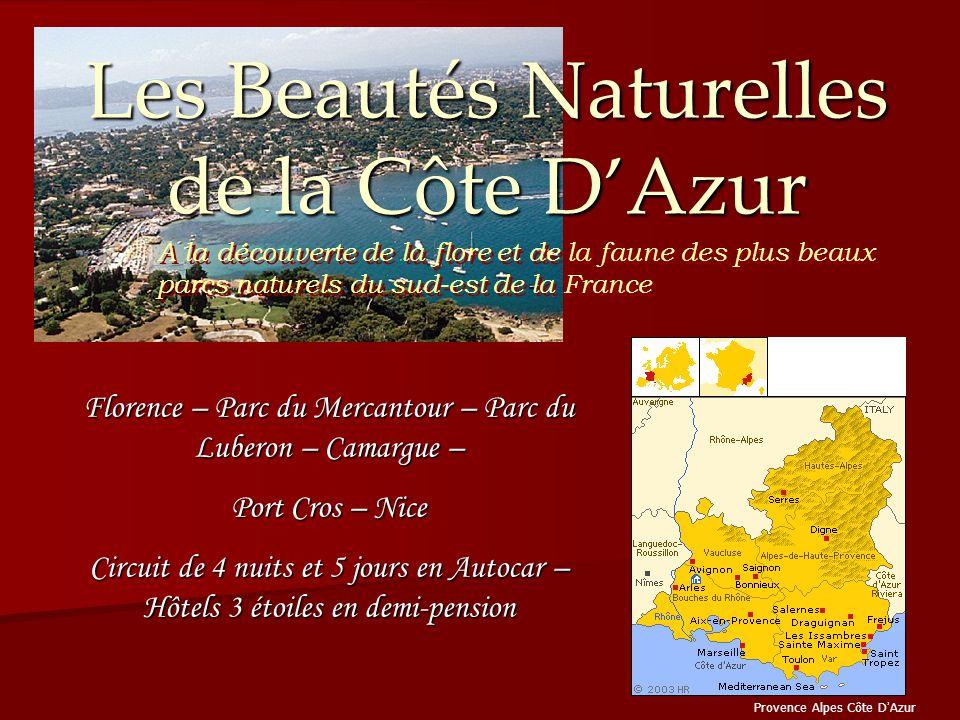 Les Beautés Naturelles de la Côte D'Azur Provence Alpes Côte D ' Azur Florence – Parc du Mercantour – Parc du Luberon – Camargue – Port Cros – Nice Ci