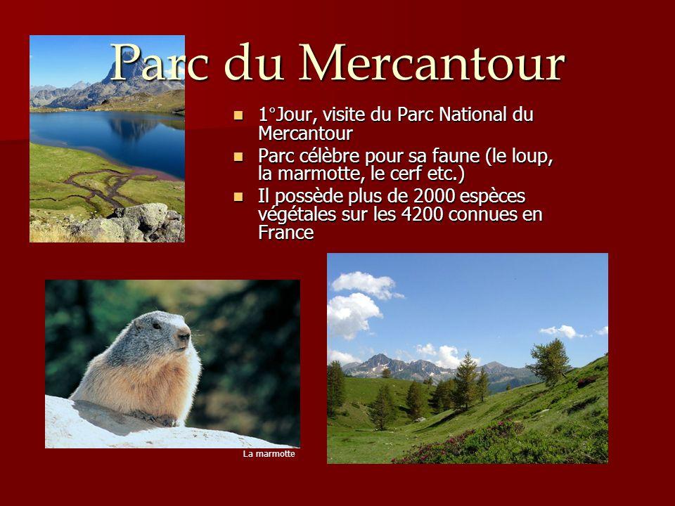 1°Jour, visite du Parc National du Mercantour 1°Jour, visite du Parc National du Mercantour Parc célèbre pour sa faune (le loup, la marmotte, le cerf