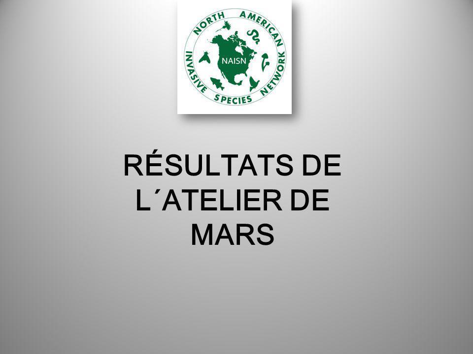 RÉSULTATS DE L´ATELIER DE MARS