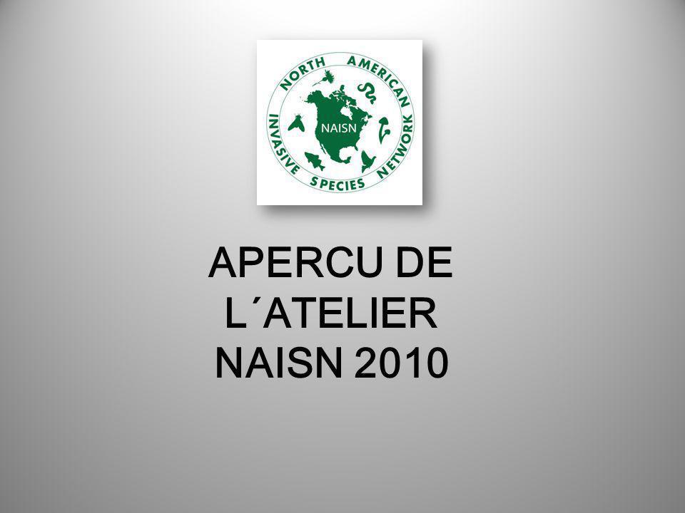 APERCU DE L´ATELIER NAISN 2010