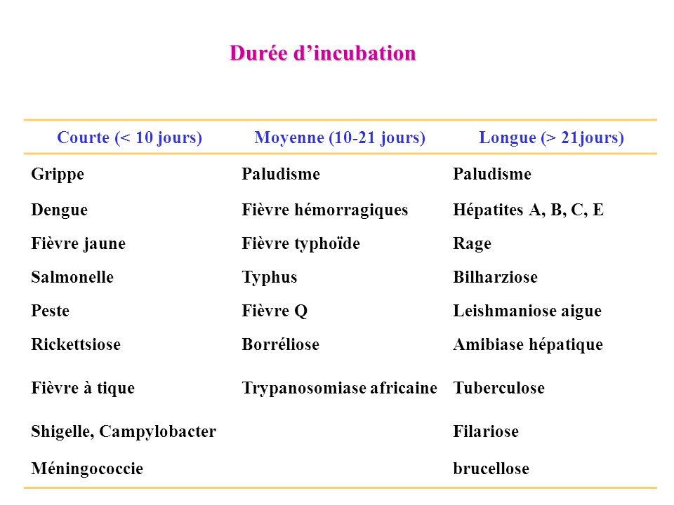 Durée d'incubation Courte (< 10 jours)Moyenne (10-21 jours)Longue (> 21jours) GrippePaludisme DengueFièvre hémorragiquesHépatites A, B, C, E Fièvre ja