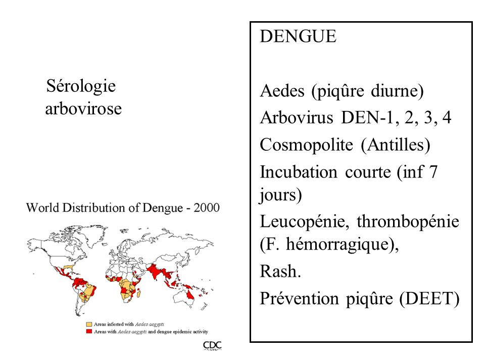 Sérologie arbovirose DENGUE Aedes (piqûre diurne) Arbovirus DEN-1, 2, 3, 4 Cosmopolite (Antilles) Incubation courte (inf 7 jours) Leucopénie, thrombop
