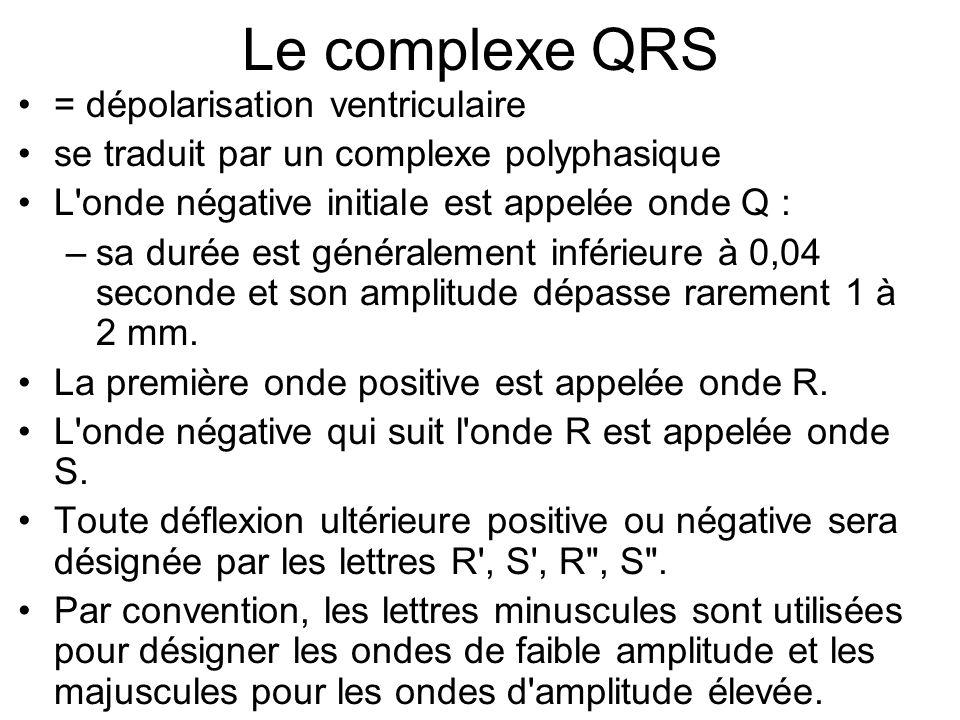 Le complexe QRS = dépolarisation ventriculaire se traduit par un complexe polyphasique L'onde négative initiale est appelée onde Q : –sa durée est gén