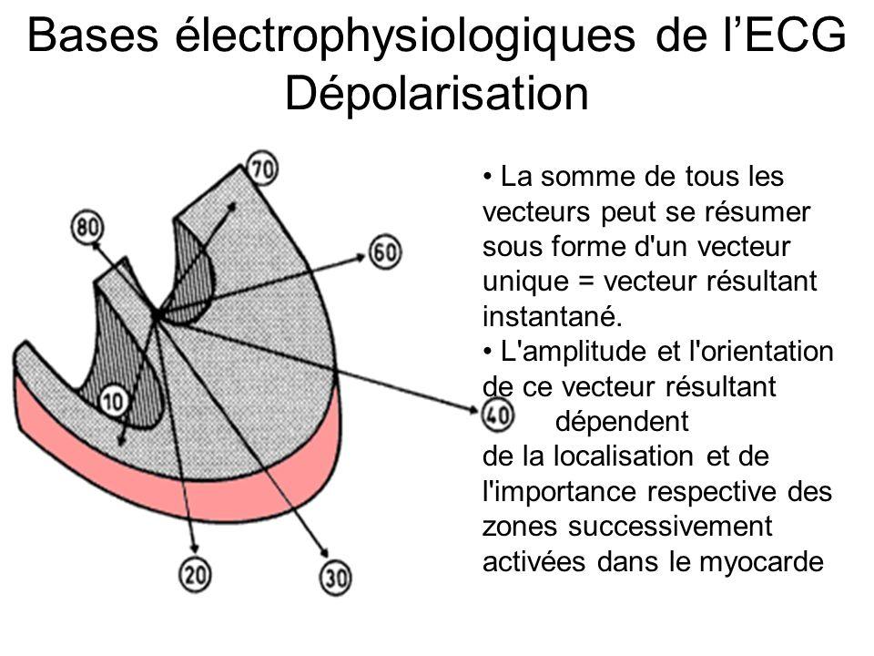 Électrocardiogramme : la fréquence Fréquence : 60 000 / intervalle en ms 25 mm/s : 5 mm = 200 ms, 1 mm = 40 ms 300 – 150 – 100 – 75 – 60 – 50