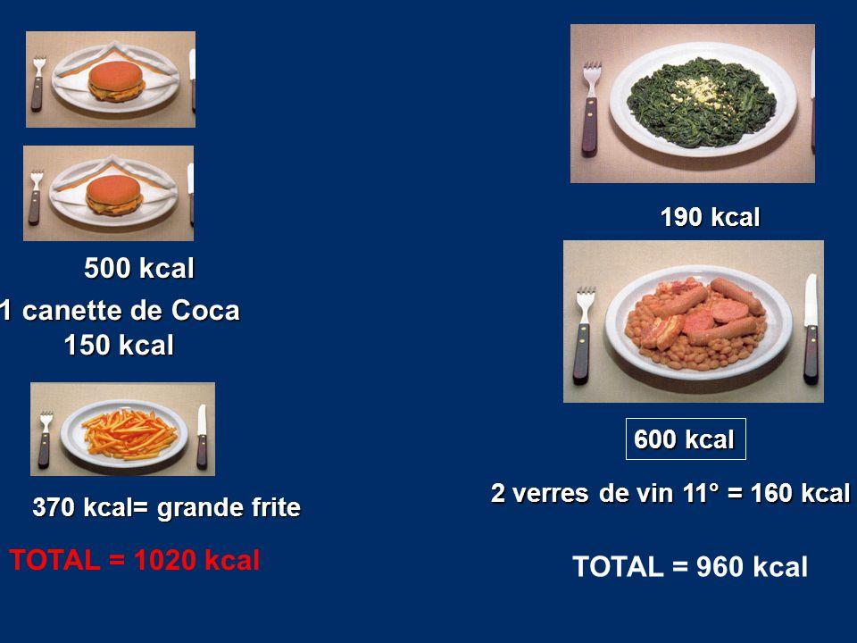 370 kcal= grande frite 500 kcal 1 canette de Coca 150 kcal TOTAL = 1020 kcal 190 kcal 600 kcal 2 verres de vin 11° = 160 kcal TOTAL = 960 kcal